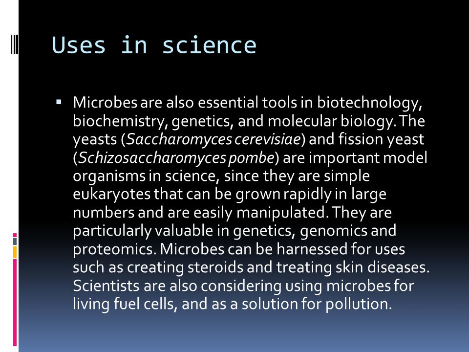 Uses in science  Microbes are also essential tools in biotechnology, biochemistry, genetics, and molecular biology.