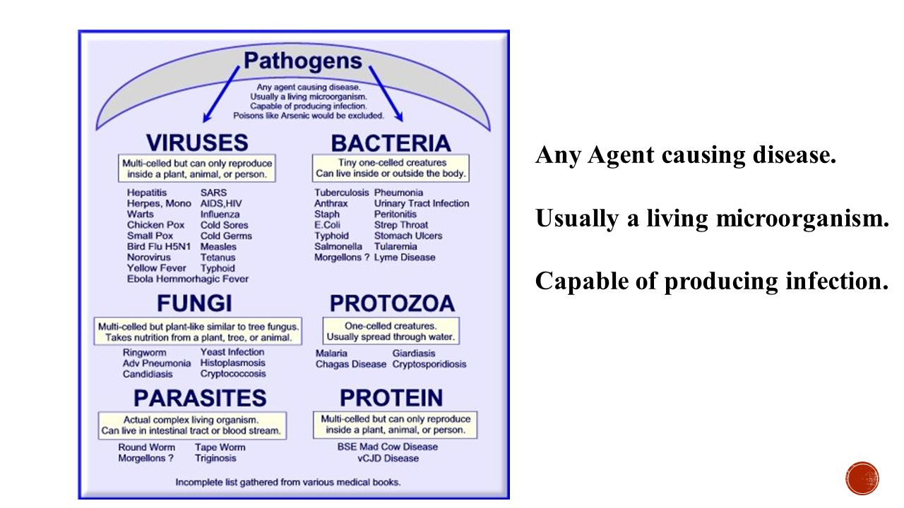 Any Agent causing disease. Usually a living microorganism. Capable of producing infection.