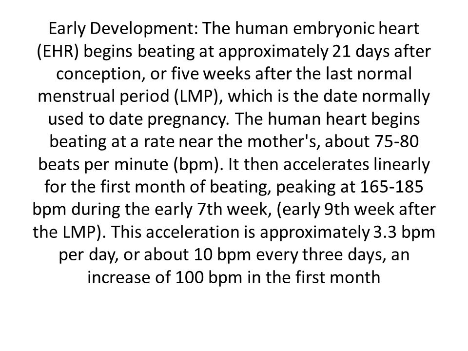 Early Development: The human embryonic heart (EHR) begins beating at approximately 21 days after conception, or five weeks after the last normal menst