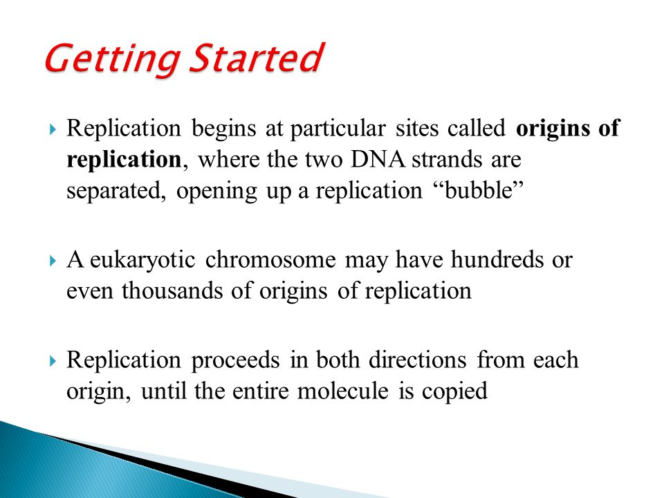  Replication begins at particular sites called origins of replication, where the two DNA strands are separated, opening up a replication bubble  A eukaryotic chromosome may have hundreds or even thousands of origins of replication  Replication proceeds in both directions from each origin, until the entire molecule is copied