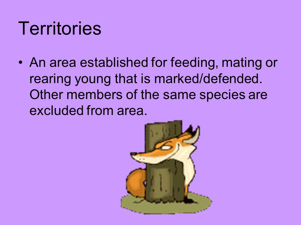 Territories An area established for feeding, mating or rearing young that is marked/defended.