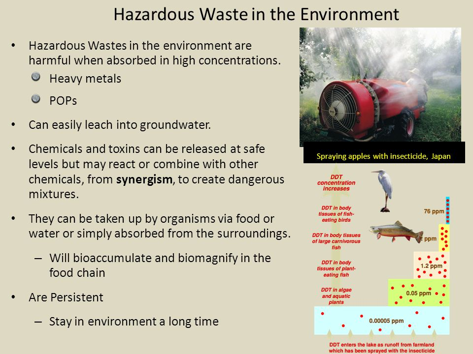 Hazardous Waste & Health Heavy metals - Neurotoxins Damage Brain & nerve function Metal retardation Hyperactivity, Shortened attention span, Behavior disorder Kidney & Skeleton damage Death POP – – Disrupt systems Endocrine – Gender benders – Thyroid disorders Reproductive – Birth defects – Reduced fertility Immune – Cancer – Death