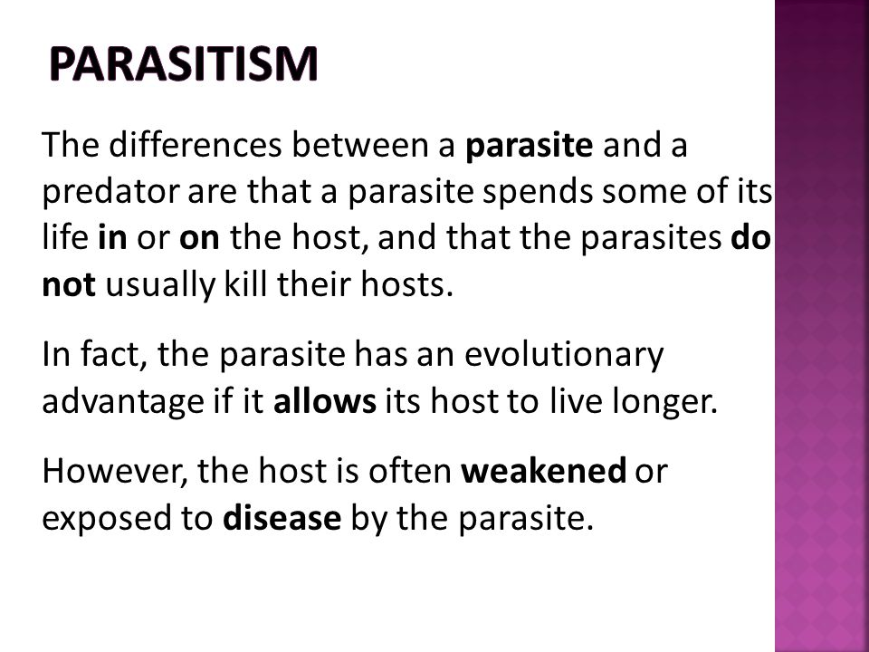 The differences between a parasite and a predator are that a parasite spends some of its life in or on the host, and that the parasites do not usually