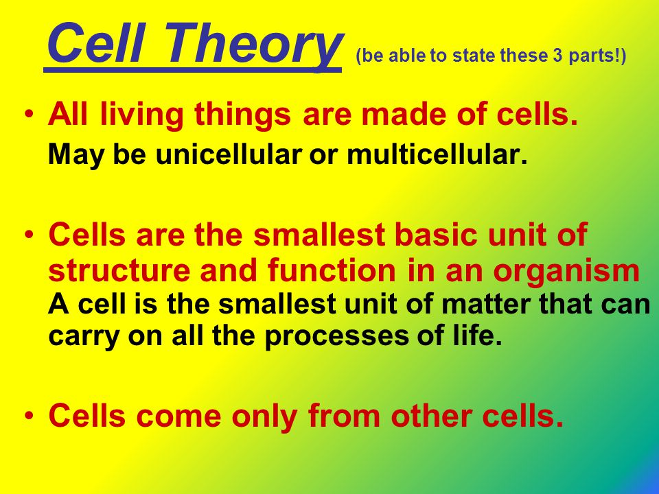 Cell Theory (be able to state these 3 parts!) All living things are made of cells. May be unicellular or multicellular. Cells are the smallest basic u