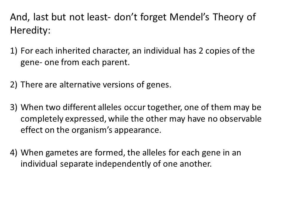 And, last but not least- don't forget Mendel's Theory of Heredity: 1)For each inherited character, an individual has 2 copies of the gene- one from each parent.