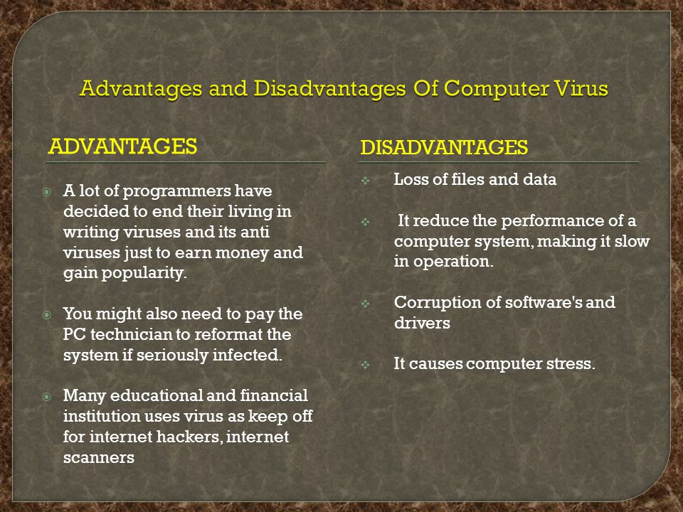 ADVANTAGES DISADVANTAGES  A lot of programmers have decided to end their living in writing viruses and its anti viruses just to earn money and gain popularity.