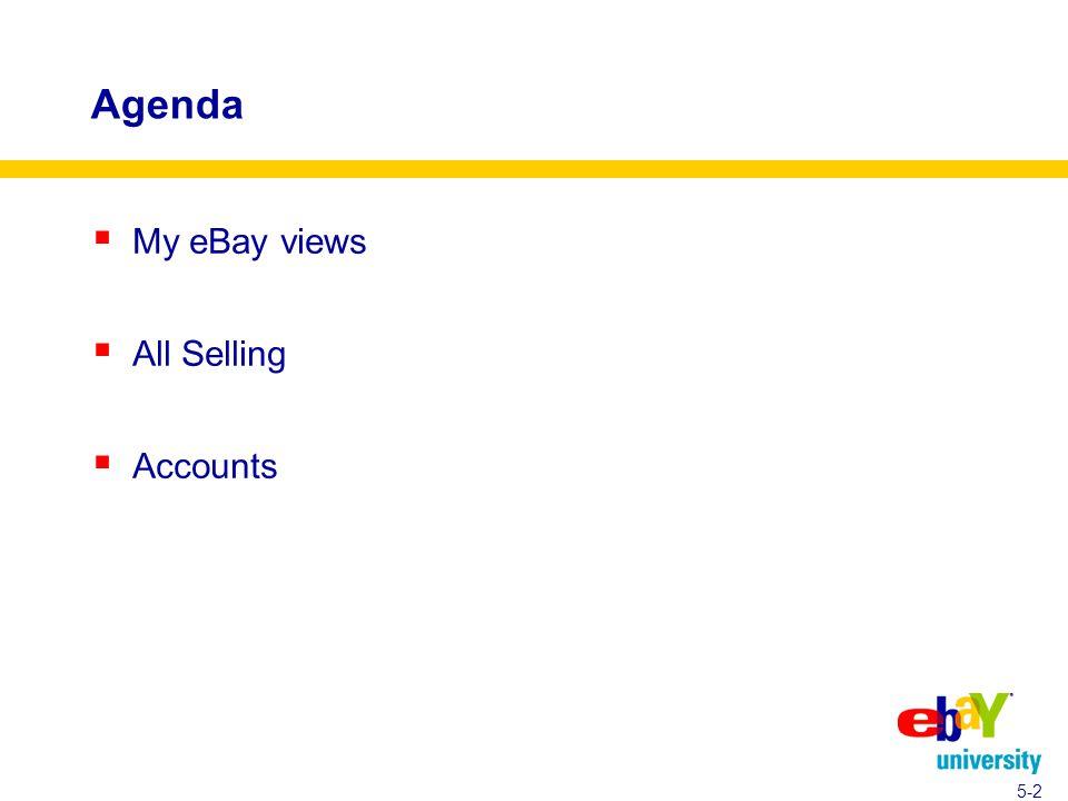 Agenda  My eBay views  All Selling  Accounts 5-2
