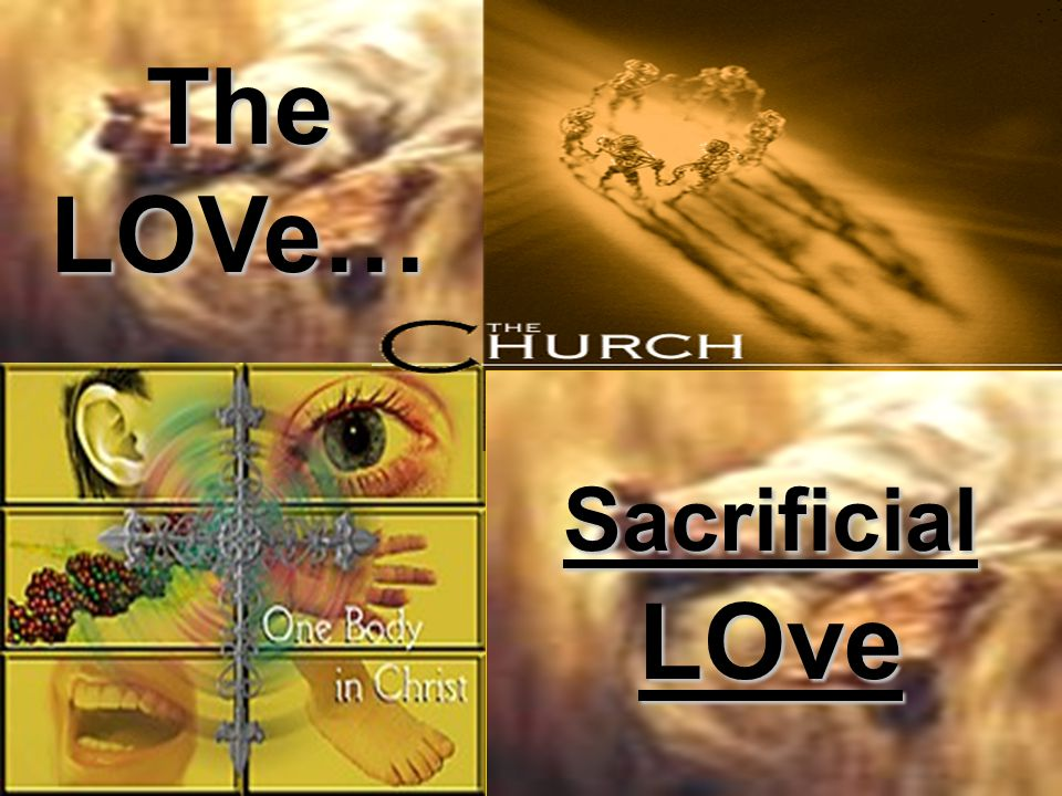 The LOVe… Sacrificial LOve
