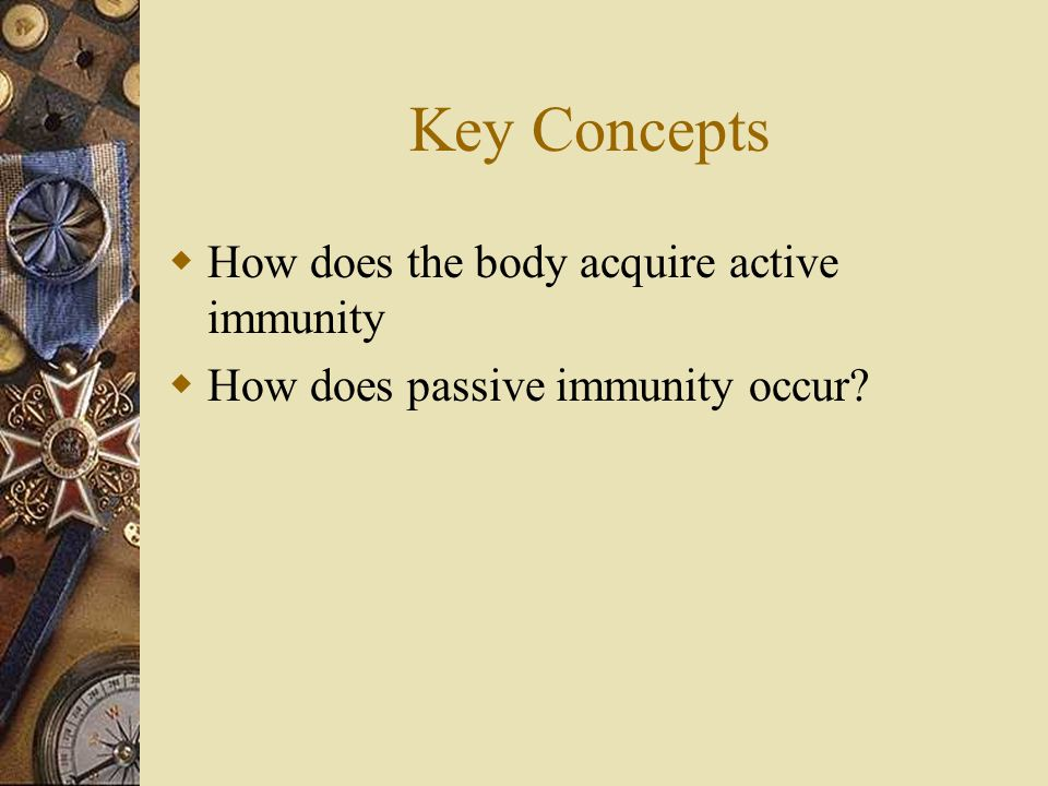 Key Concepts  How does the body acquire active immunity  How does passive immunity occur