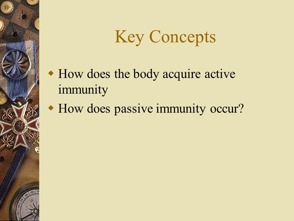 Key Terms ImmunityActive immunity VaccinationVaccine AntibioticPassive immunity