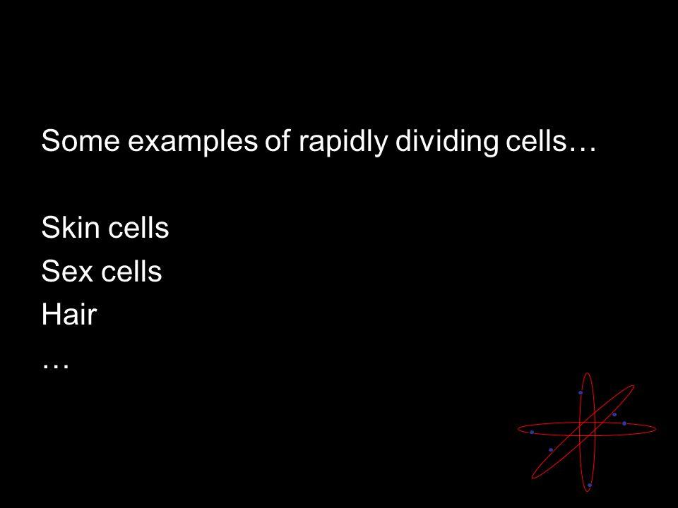 Skin cells Sex cells Hair …