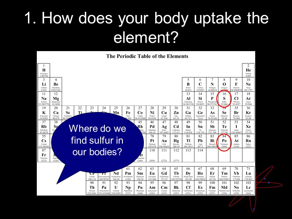 Where do we find sulfur in our bodies