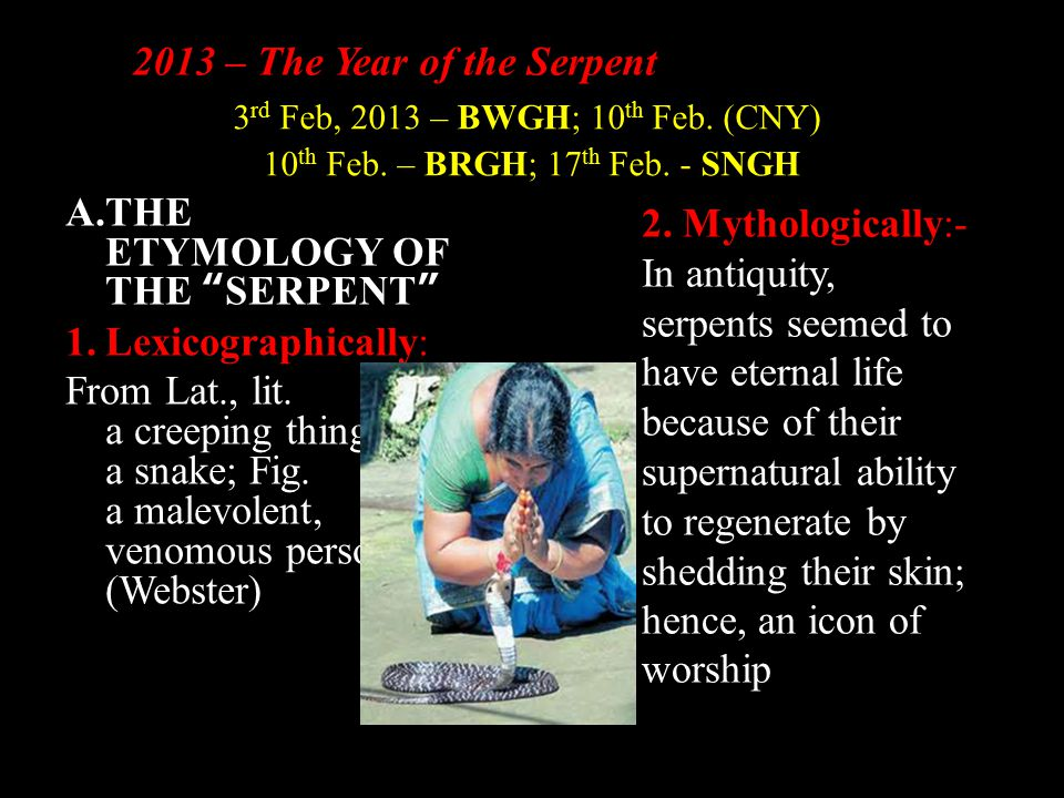 2013 – The Year of the Serpent A.THE ETYMOLOGY OF THE SERPENT 1.Lexicographically: From Lat., lit.