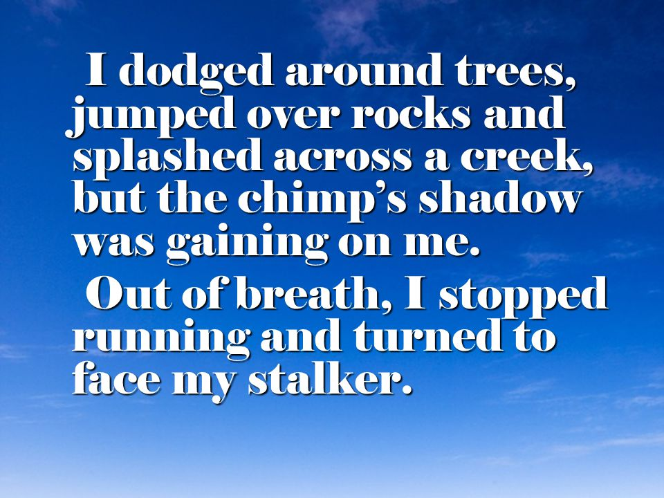 I dodged around trees, jumped over rocks and splashed across a creek, but the chimp's shadow was gaining on me.