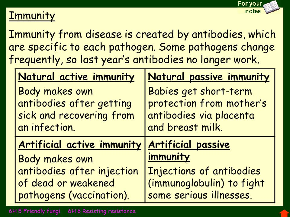 Immunity Immunity from disease is created by antibodies, which are specific to each pathogen. Some pathogens change frequently, so last year's antibod