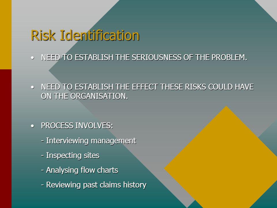 Risk Identification NEED TO ESTABLISH THE SERIOUSNESS OF THE PROBLEM.NEED TO ESTABLISH THE SERIOUSNESS OF THE PROBLEM. NEED TO ESTABLISH THE EFFECT TH