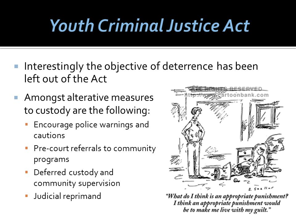  Amongst alterative measures to custody are the following:  Encourage police warnings and cautions  Pre-court referrals to community programs  Deferred custody and community supervision  Judicial reprimand  Interestingly the objective of deterrence has been left out of the Act