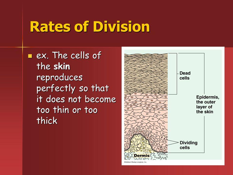 Rates of Division ex.