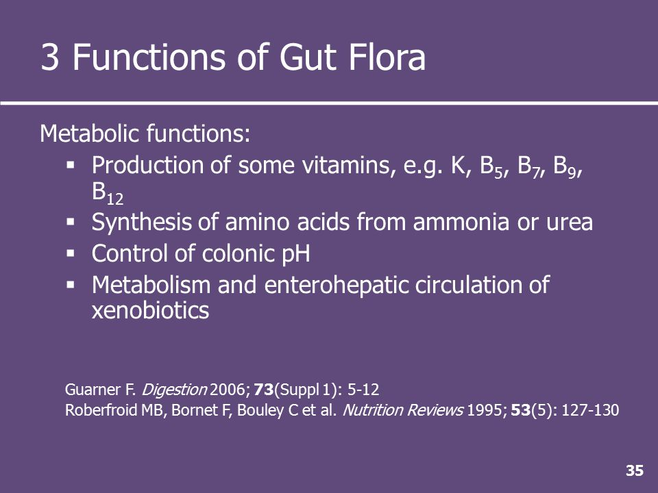 3 Functions of Gut Flora Metabolic functions:  Production of some vitamins, e.g.