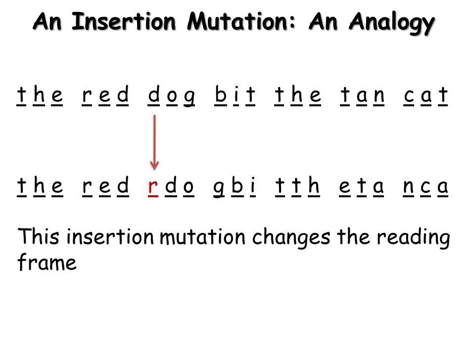 A Deletion Mutation in a Gene