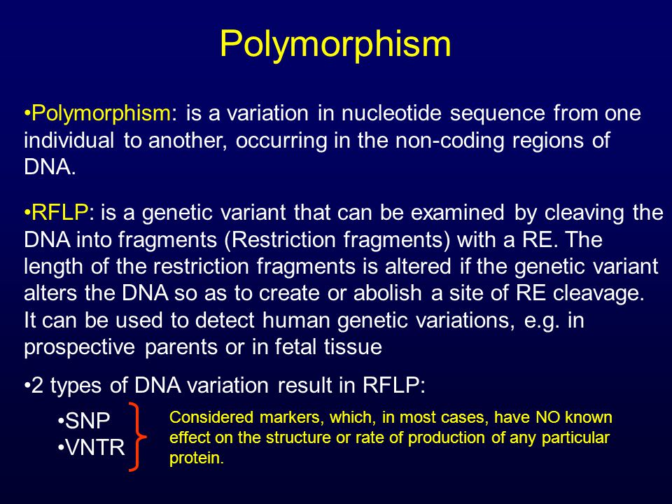 Polymorphism Polymorphism: is a variation in nucleotide sequence from one individual to another, occurring in the non-coding regions of DNA. RFLP: is