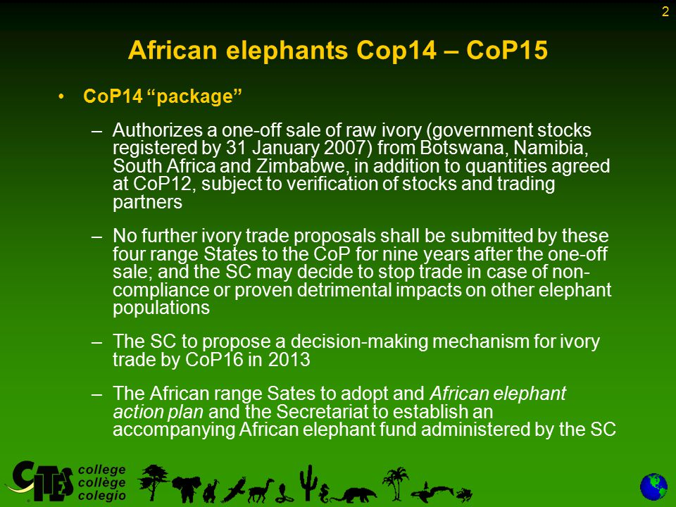 2 African elephants Cop14 – CoP15 CoP14 package –Authorizes a one-off sale of raw ivory (government stocks registered by 31 January 2007) from Botswana, Namibia, South Africa and Zimbabwe, in addition to quantities agreed at CoP12, subject to verification of stocks and trading partners –No further ivory trade proposals shall be submitted by these four range States to the CoP for nine years after the one-off sale; and the SC may decide to stop trade in case of non- compliance or proven detrimental impacts on other elephant populations –The SC to propose a decision-making mechanism for ivory trade by CoP16 in 2013 –The African range Sates to adopt and African elephant action plan and the Secretariat to establish an accompanying African elephant fund administered by the SC