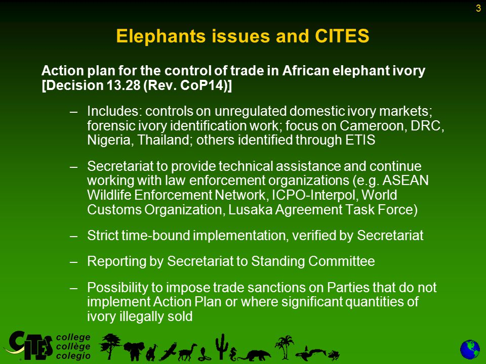 3 Elephants issues and CITES Action plan for the control of trade in African elephant ivory [Decision 13.28 (Rev. CoP14)] –Includes: controls on unreg