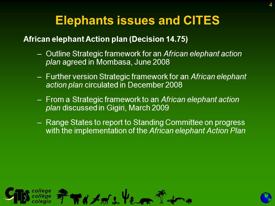 4 Elephants issues and CITES African elephant Action plan (Decision 14.75) –Outline Strategic framework for an African elephant action plan agreed in Mombasa, June 2008 –Further version Strategic framework for an African elephant action plan circulated in December 2008 –From a Strategic framework to an African elephant action plan discussed in Gigiri, March 2009 –Range States to report to Standing Committee on progress with the implementation of the African elephant Action Plan