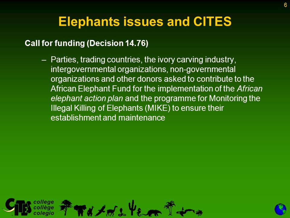 6 Elephants issues and CITES Call for funding (Decision 14.76) –Parties, trading countries, the ivory carving industry, intergovernmental organizations, non-governmental organizations and other donors asked to contribute to the African Elephant Fund for the implementation of the African elephant action plan and the programme for Monitoring the Illegal Killing of Elephants (MIKE) to ensure their establishment and maintenance