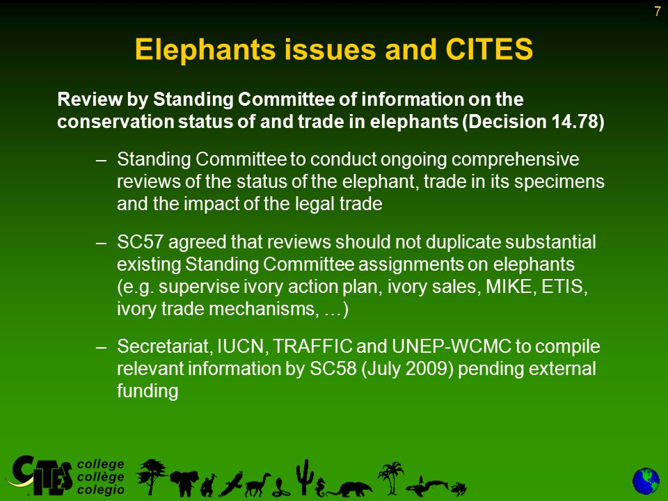 7 Elephants issues and CITES Review by Standing Committee of information on the conservation status of and trade in elephants (Decision 14.78) –Standing Committee to conduct ongoing comprehensive reviews of the status of the elephant, trade in its specimens and the impact of the legal trade –SC57 agreed that reviews should not duplicate substantial existing Standing Committee assignments on elephants (e.g.