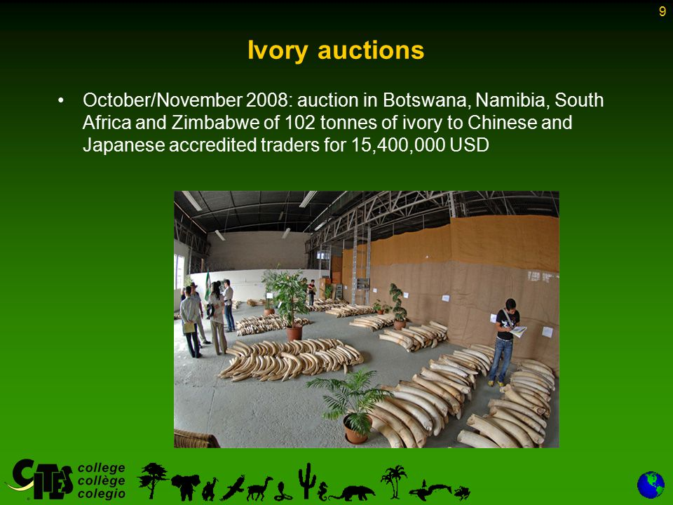 9 Ivory auctions October/November 2008: auction in Botswana, Namibia, South Africa and Zimbabwe of 102 tonnes of ivory to Chinese and Japanese accredi