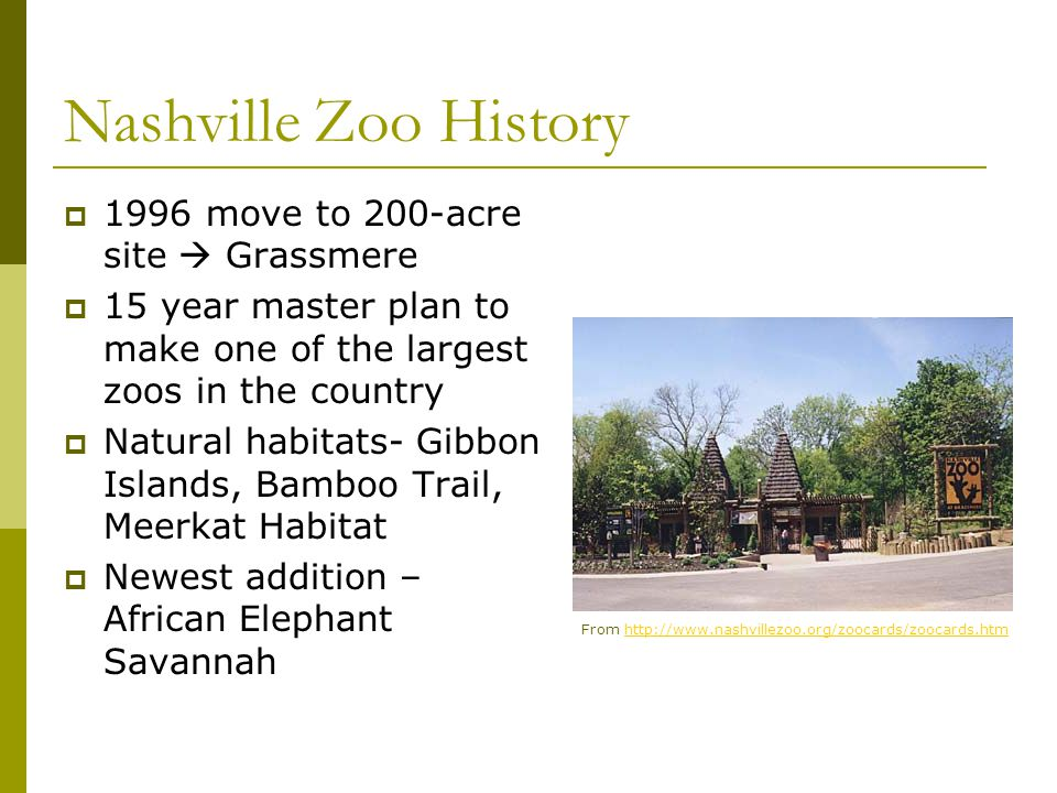 Nashville Zoo History  1996 move to 200-acre site  Grassmere  15 year master plan to make one of the largest zoos in the country  Natural habitats