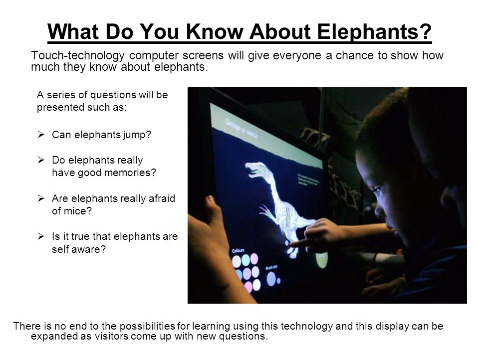 How Elephants Use Their Trunks With the help of a robotic elephant trunk, you will be able to try to manipulate items and will learn how elephants use their trunks to pick up food as small as a grape.