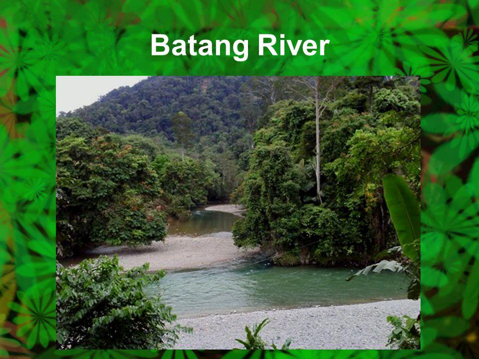 Batang River