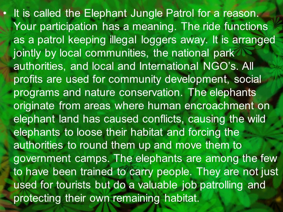 It is called the Elephant Jungle Patrol for a reason.