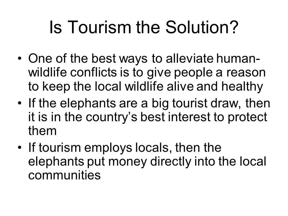 Is Tourism the Solution.
