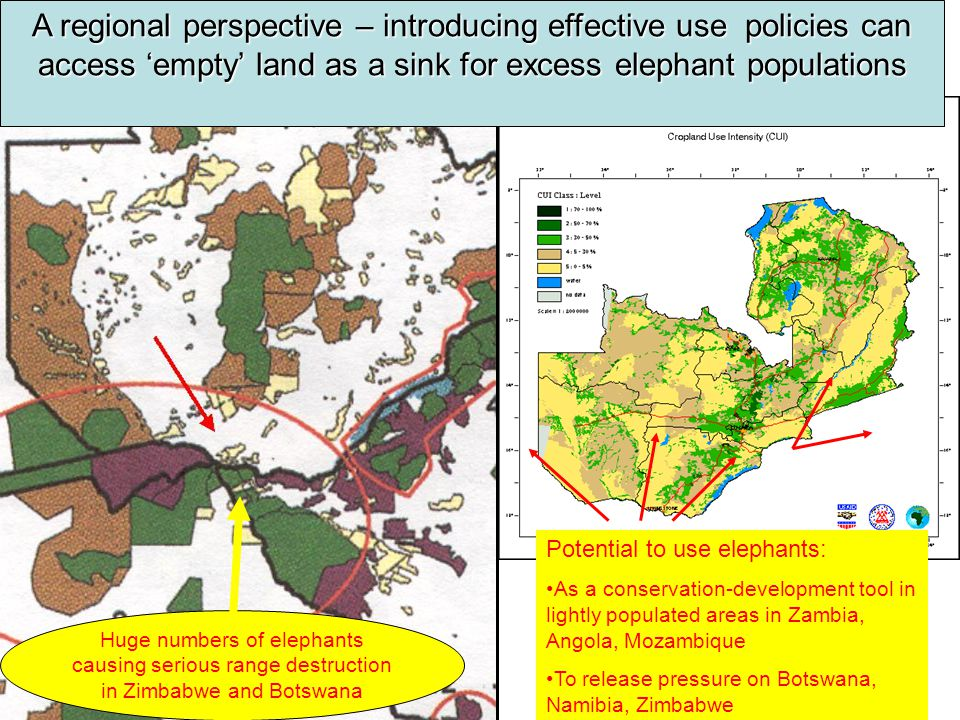 Huge numbers of elephants causing serious range destruction in Zimbabwe and Botswana A regional perspective – introducing effective use policies can access 'empty' land as a sink for excess elephant populations Potential to use elephants: As a conservation-development tool in lightly populated areas in Zambia, Angola, Mozambique To release pressure on Botswana, Namibia, Zimbabwe