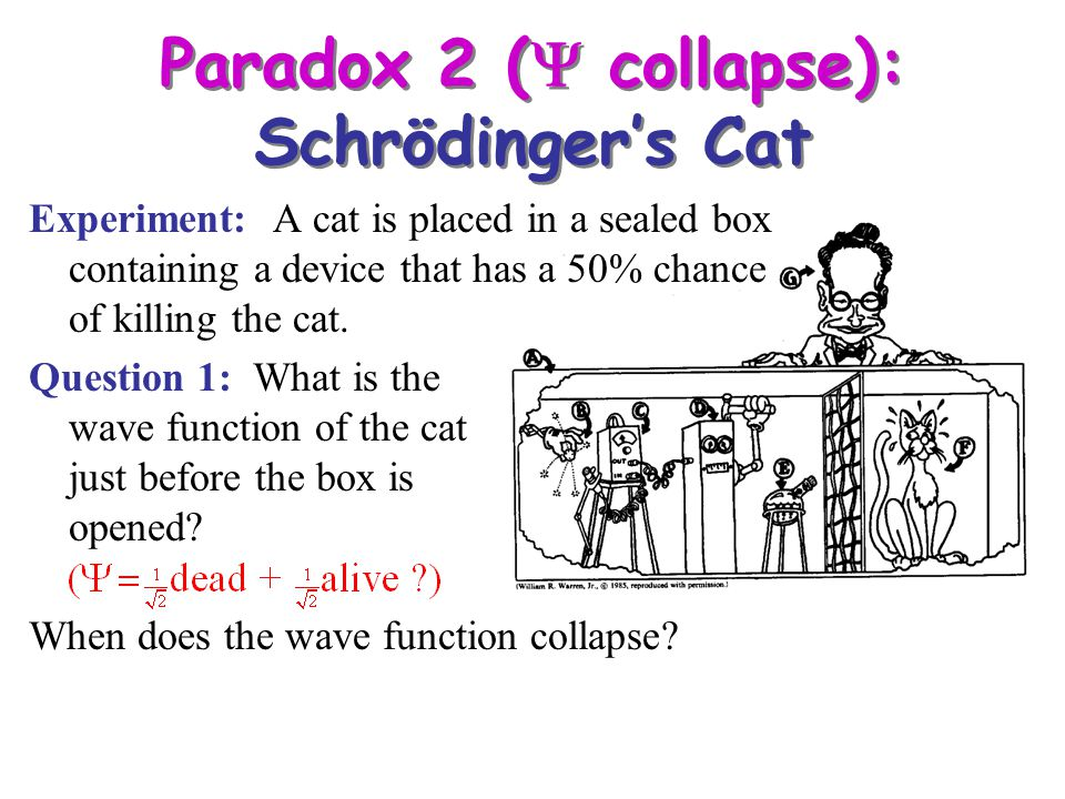 Experiment: A cat is placed in a sealed box containing a device that has a 50% chance of killing the cat. Question 1: What is the wave function of the