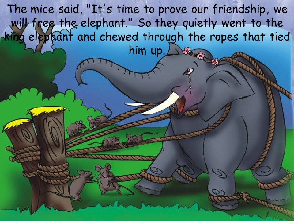 The mice said, It s time to prove our friendship, we will free the elephant. So they quietly went to the king elephant and chewed through the ropes that tied him up.