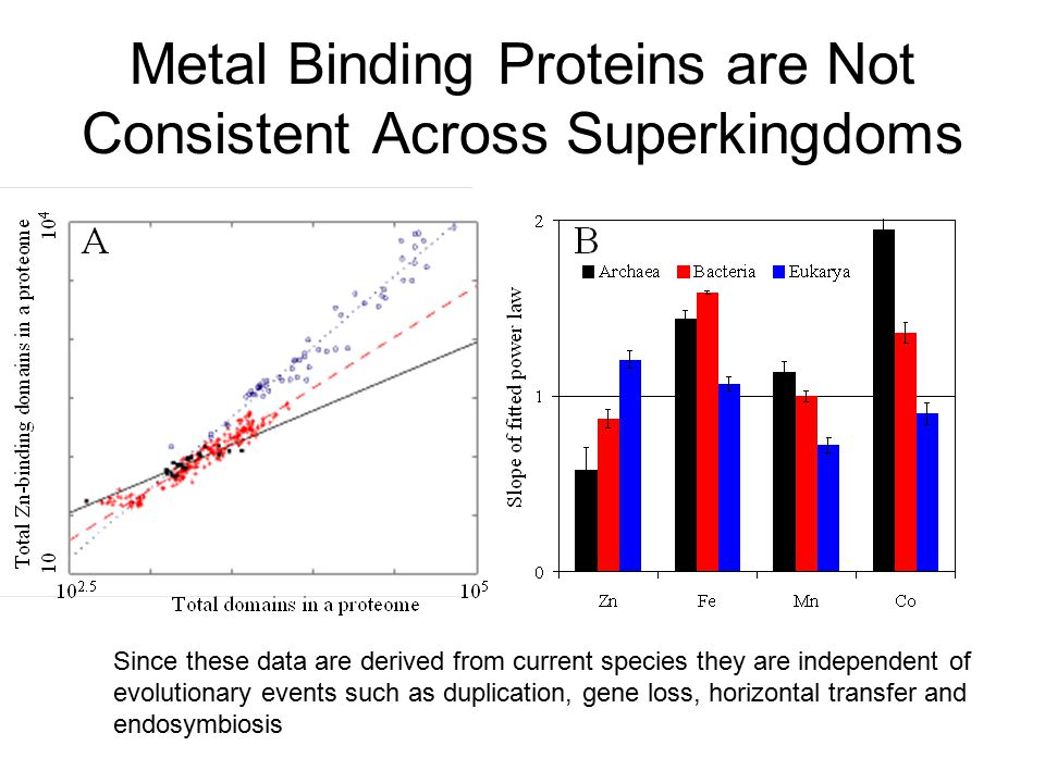 Metal Binding Proteins are Not Consistent Across Superkingdoms Since these data are derived from current species they are independent of evolutionary events such as duplication, gene loss, horizontal transfer and endosymbiosis