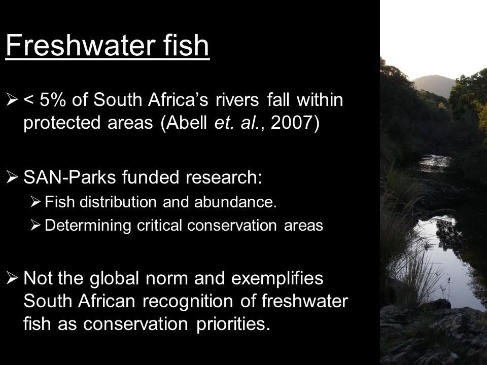 Freshwater fish  < 5% of South Africa's rivers fall within protected areas (Abell et.