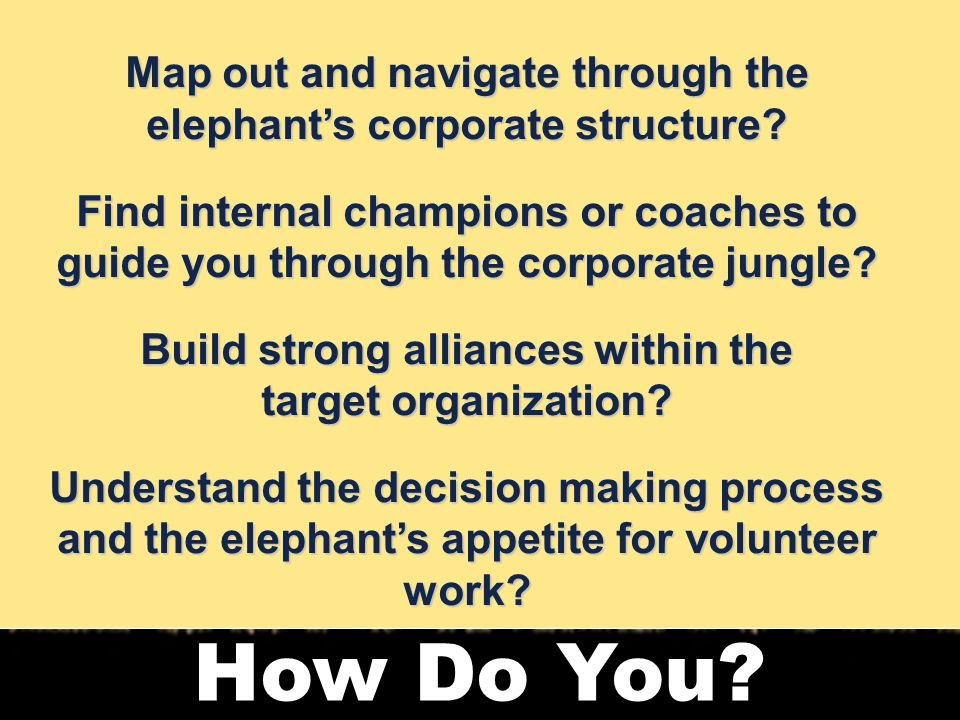 12 How Do You. Map out and navigate through the elephant's corporate structure.