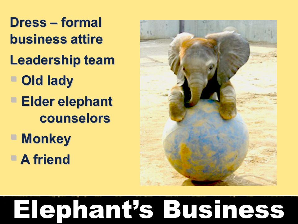 6 Elephant's Business Dress – formal business attire Leadership team  Old lady  Elder elephant counselors  Monkey  A friend