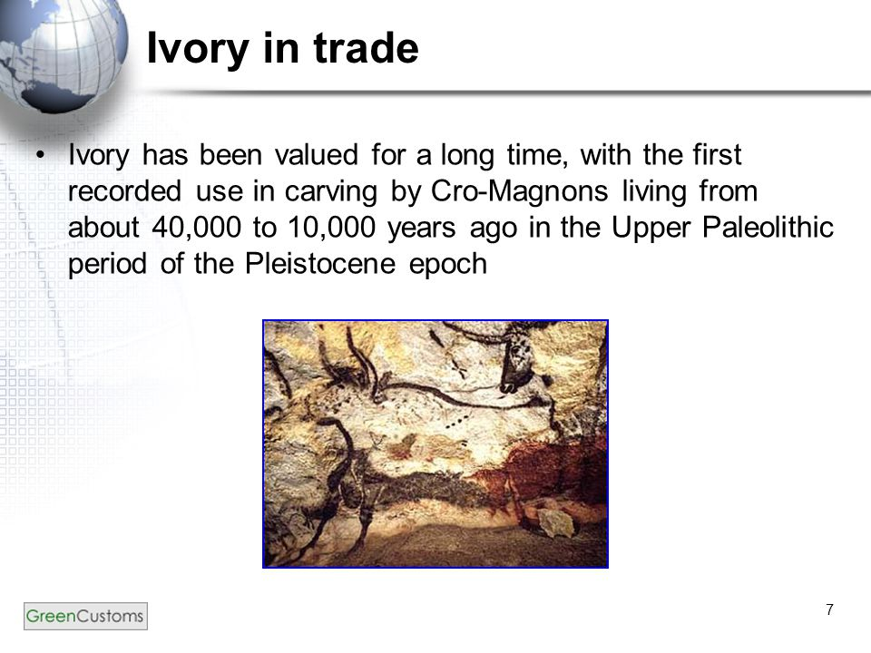 7 Ivory in trade Ivory has been valued for a long time, with the first recorded use in carving by Cro-Magnons living from about 40,000 to 10,000 years ago in the Upper Paleolithic period of the Pleistocene epoch
