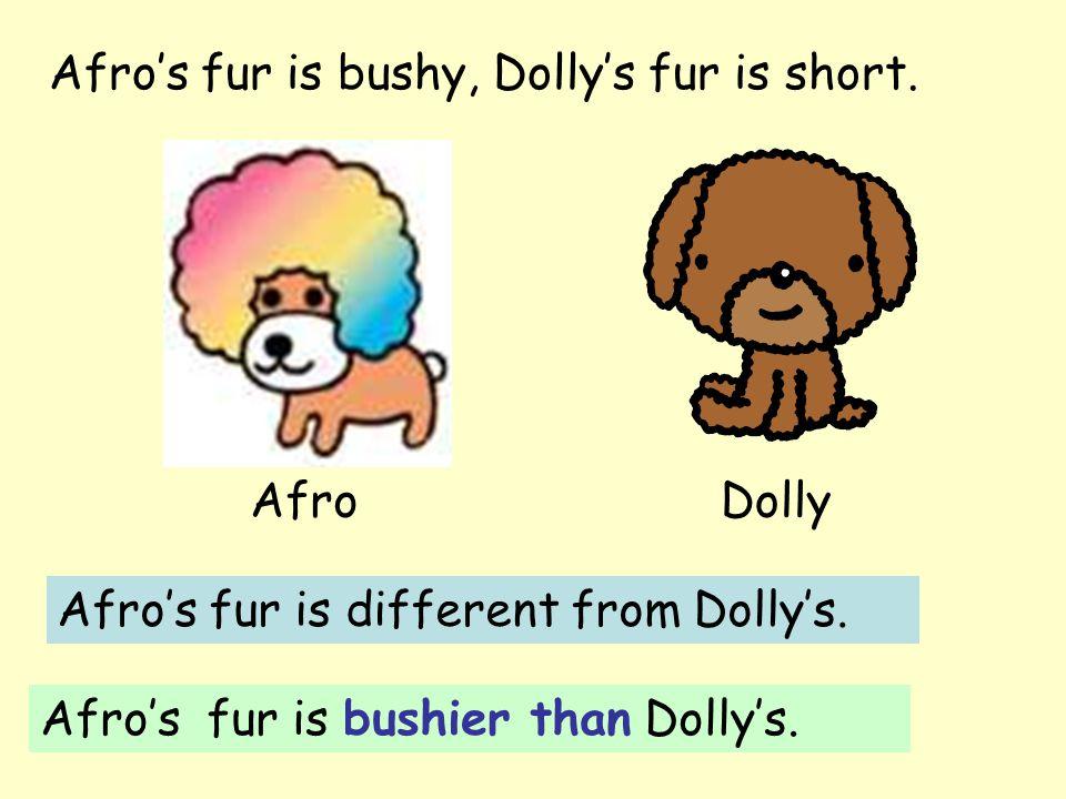 Afro's fur is bushy, Dolly's fur is short. AfroDolly Afro's fur is different from Dolly's.
