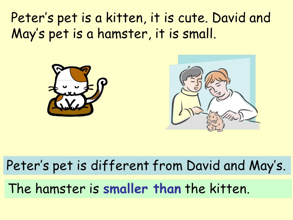 Peter's pet is a kitten, it is cute. David and May's pet is a hamster, it is small. Peter's pet is different from David and May's. The hamster is smal