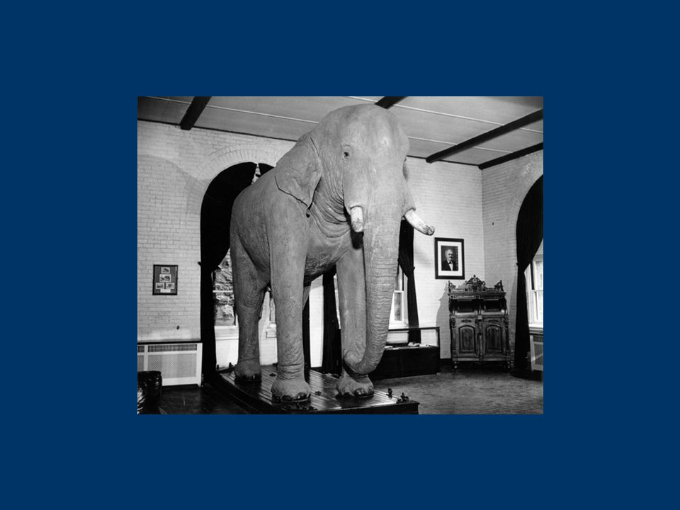 Manage Accession Maintain Disseminate Preserve Institutional Repositories New England Archivist Eliot Wilczek Tufts University March 11, 2006 Describing the Elephant Preservation Levels Bit-Level Functional