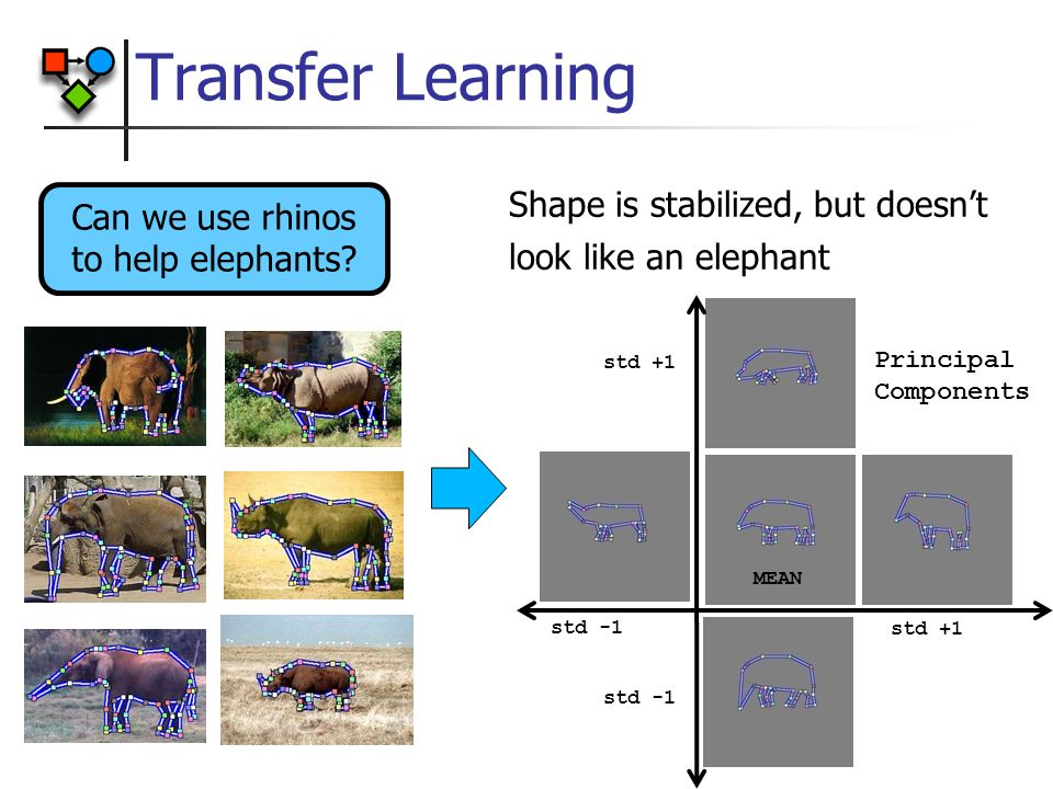 Transfer Learning MEAN Principal Components Shape is stabilized, but doesn't look like an elephant Can we use rhinos to help elephants.