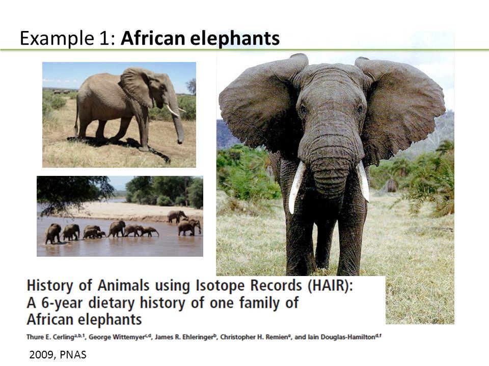 Example 1: African elephants 2009, PNAS