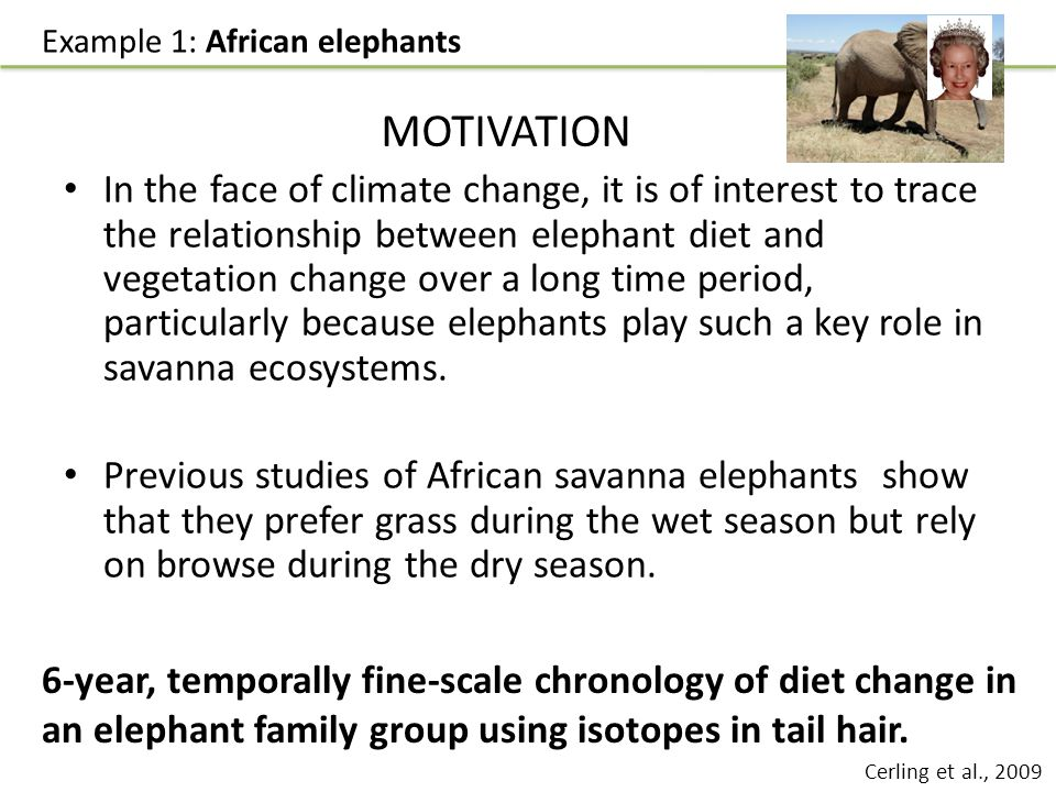 In the face of climate change, it is of interest to trace the relationship between elephant diet and vegetation change over a long time period, particularly because elephants play such a key role in savanna ecosystems.